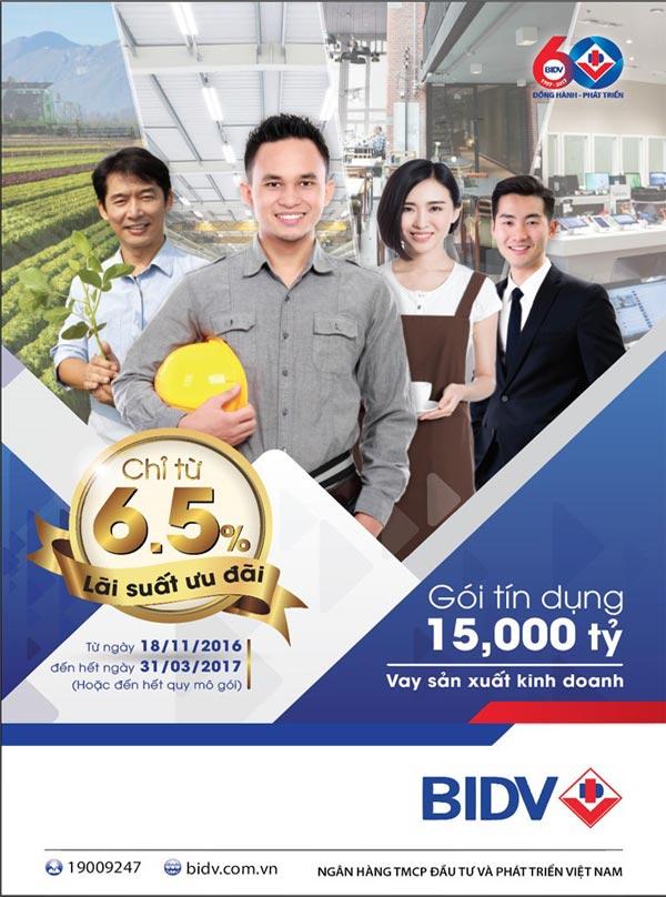 vay-von-kinh-doanh-ngan-hang-bidv-002
